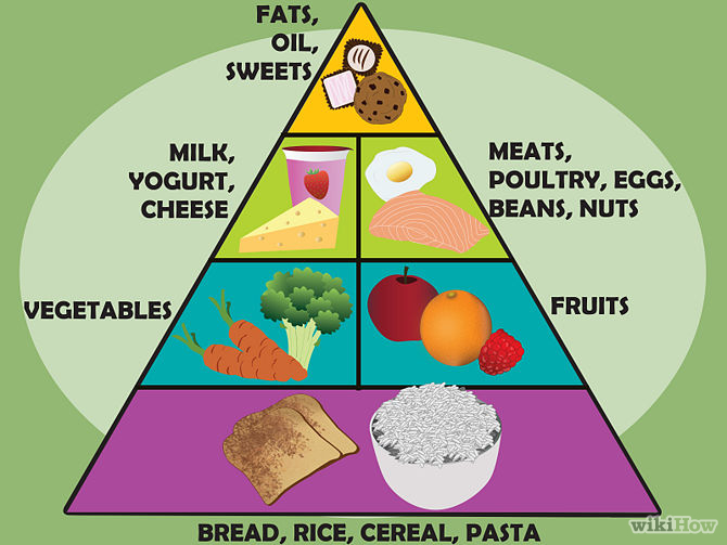 Image result for food guide pyramid image